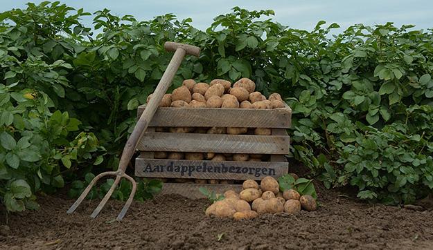 Kruimige aardappelen