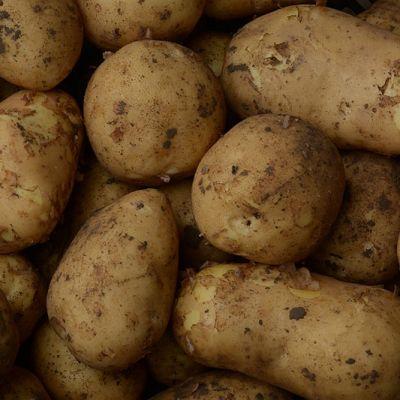 Ramos aardappelen