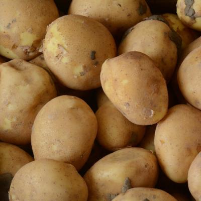 Connect aardappelen