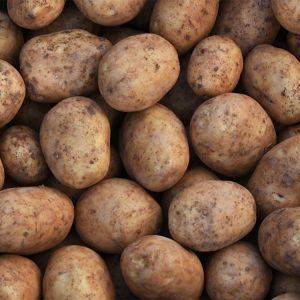 Malta aardappelen, Malta's