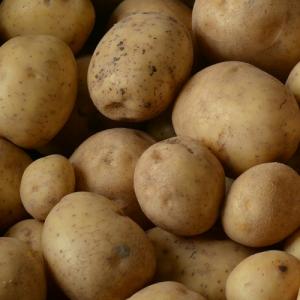 Solist aardappelen
