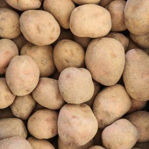 Irene aardappelen